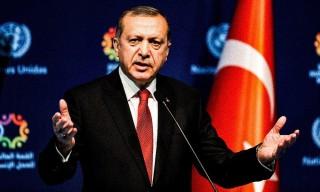 Erdoğan cannabis